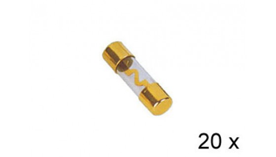 RTA 154.672-2 AGU gilded glass fuses, 40A