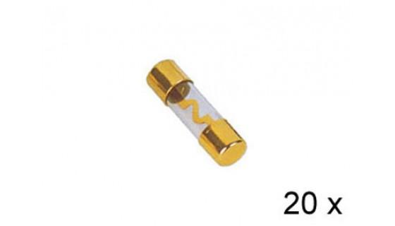 RTA 154.673-2 AGU glass fuses plated, 60A